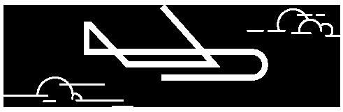 amp-avion-icono